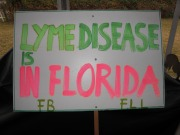 My husband helped me do this sign for a small rally we did a couple of years ago in front of a newspaper to ask them to please do not write articles stating that Lyme Disease can be cured in two weeks because that is false, wrong and is the cause of people dying!